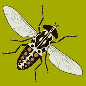 Gadflies